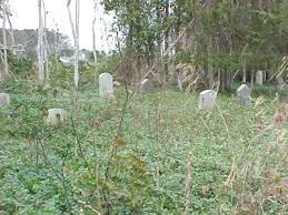 Owens-Berry Cemetery - Jarvisburg, Currituck Co., NC
