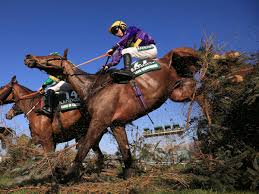 Virtual Grand National 2020: How it ...