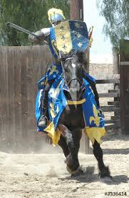 Image result for pictures of charging knight on horse