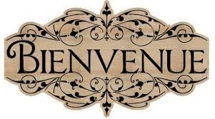 French Stencil - Bienvenue Stencil - Welcome - stencil - reusable mylar  stencil 11.25