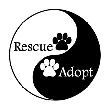 Adopt Rescue Vinyl Sticker Im4cause Com