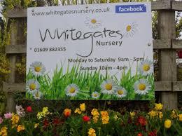 whitegates nursery slubne suknie info