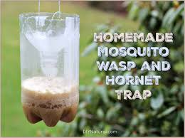 homemade mosquito traps and homemade