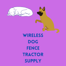 Wireless Dog Fence Tractor Supply Some Advantages And Disadvantages
