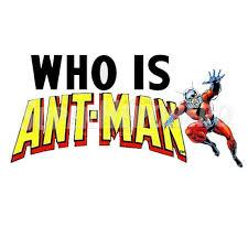 Custom Ant Man Iron On Transfers Wall Car Stickers No 6487 Superheroironons 0621 2 Superheroironons Com