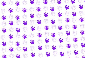 67 paw print wallpaper on wallpapersafari