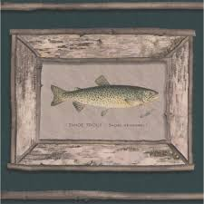 trout fish pictures on pine green wall