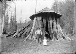 Image result for Clallam County  historic photos