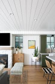 Large Cottage Open Floor Plan  Background