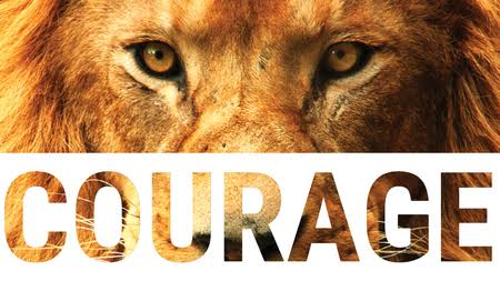 Image result for Courage""