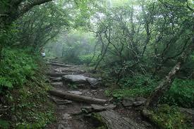 north ina craggy pinnacle trail