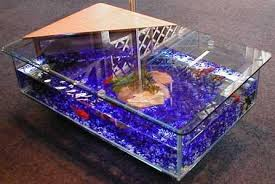 diy coffee table fish tank glass fish