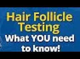 hair follicle test do not go you