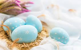 تحميل خلفيات بيض عيد الفصح عش الأزرق البيض الملون عيد الفصح