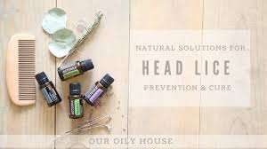 simple home remedy for head lice