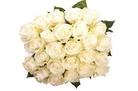 بوكيه ورد ابيض الورد الابيض هو النقاء مساء الخير