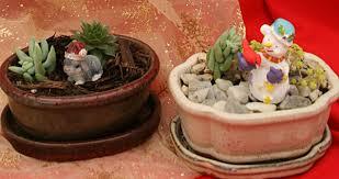 mini mini succulent garden