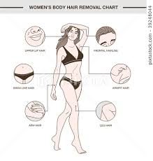 body hair removal chart