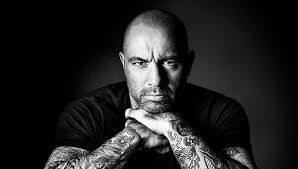 joe rogan quotes to help you conquer life and be your own hero