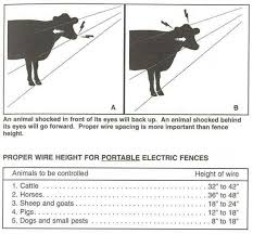 Wire Height Livestock Fence Electric Fence For Cattle Electric Fence
