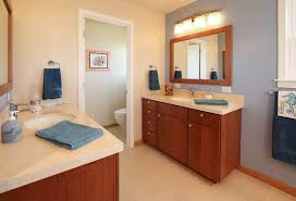 master bath suite remodel featuring his