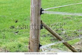 Fence Post Plastic Holder Stock Photo Edit Now 1010397796