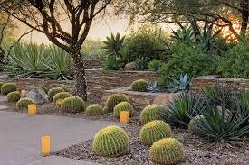 15 amazing desert landscaping ideas