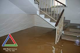 The Water Damage Restoration Process - Utah Flood Cleanup