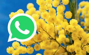 Festa della Donna 2018: migliori GIF per WhatsApp - Tecnocino