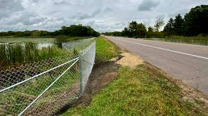 Scandia Leaders Question Chain Link Fence To Protect Turtles Was Better Looking Option Available Twin Cities