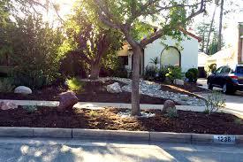 drought tolerant landscaping pasadena ca