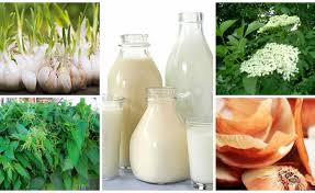 homemade organic pesticides budget