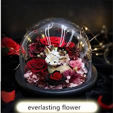 yo cho real rose in glass cover