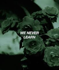 toedit roses flowers green aesthetic garden quote