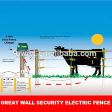 Built In Day Night Sensor Farm Electric Fence Energizer Charger Energiser Solar Powered Farm Electric Fence For Cattle Goat Buy Farm Fence Energizer 12kv Livestock Farm Charger Battery Powered Fence Energizer For Farm Product On Alibaba Com