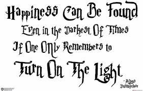 wb official licensed harry potter albus dumbledore happiness can