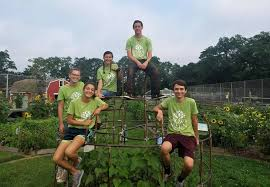 Current and Former Morristown High School Students Spend Summer With Grow  it Green Morristown | TAPinto