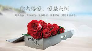 Image result for 愛是永恒