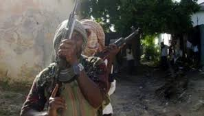 Nigeria: 15 villagers killed by gunmen in farmers-herders conflict in  northern state – Nam News Network (NNN)