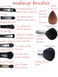 types of makeup brushes for beginners