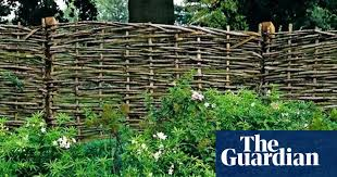 Alys Fowler A Barrier To Keep The Winter Wind At Bay Gardening Advice The Guardian