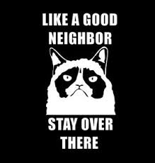 Grumpy Cat Like A Good Neighbor Stay Over There Funny Window Decal Sticker Ebay
