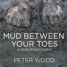 Image result for Mud
