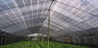 Uv Resistant Plastic Shade Netting Screen For Greenhouse Covering Fabric
