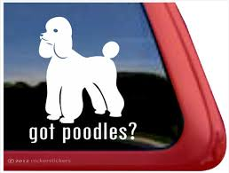 Got Poodles Dog Decals Stickers Nickerstickers