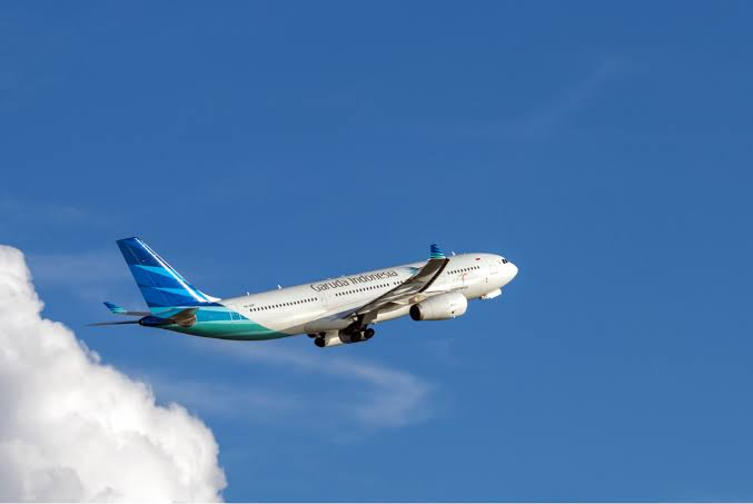 Image result for garuda indonesia""