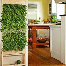 vertical garden wall inside