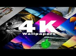 4k wallpapers free hd wallpapers