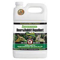 Liquid Fence Deer And Rabbit Repellent 1 Gallon Concentrate Gardeners Edge