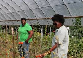 Fresh Food Abounds on a Six Acre Mississippi Farm | USDA